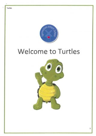 thumbnail of Welcome to Turtles
